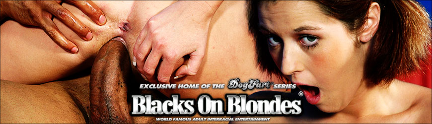 Dayna Vendetta Blacks On Blonde
