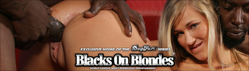 Riley Reid & Melissa Moore Blacks On Blondes Free Video