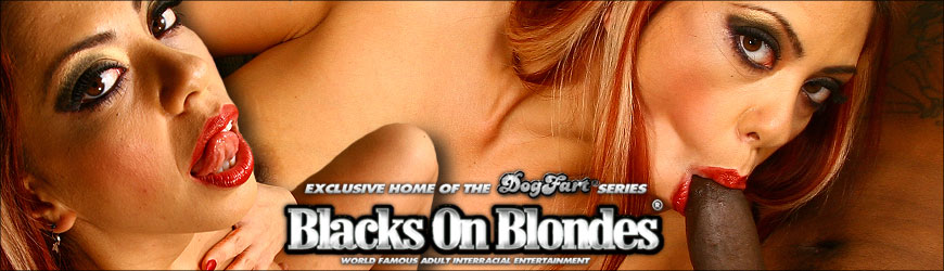 Flick Shagwell Bridgette Kerkove Blacks On Blondes