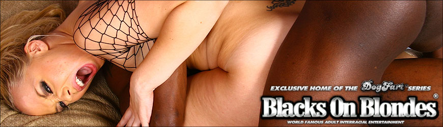 Bobbi  Starr Black Dick Picture