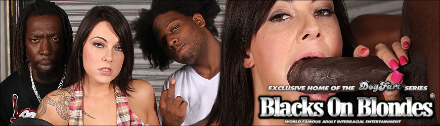 Allison Wyte Blacks On Blondes Review